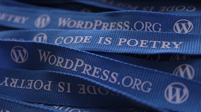 Everyone Should Attend A WordCamp And Here's Why
